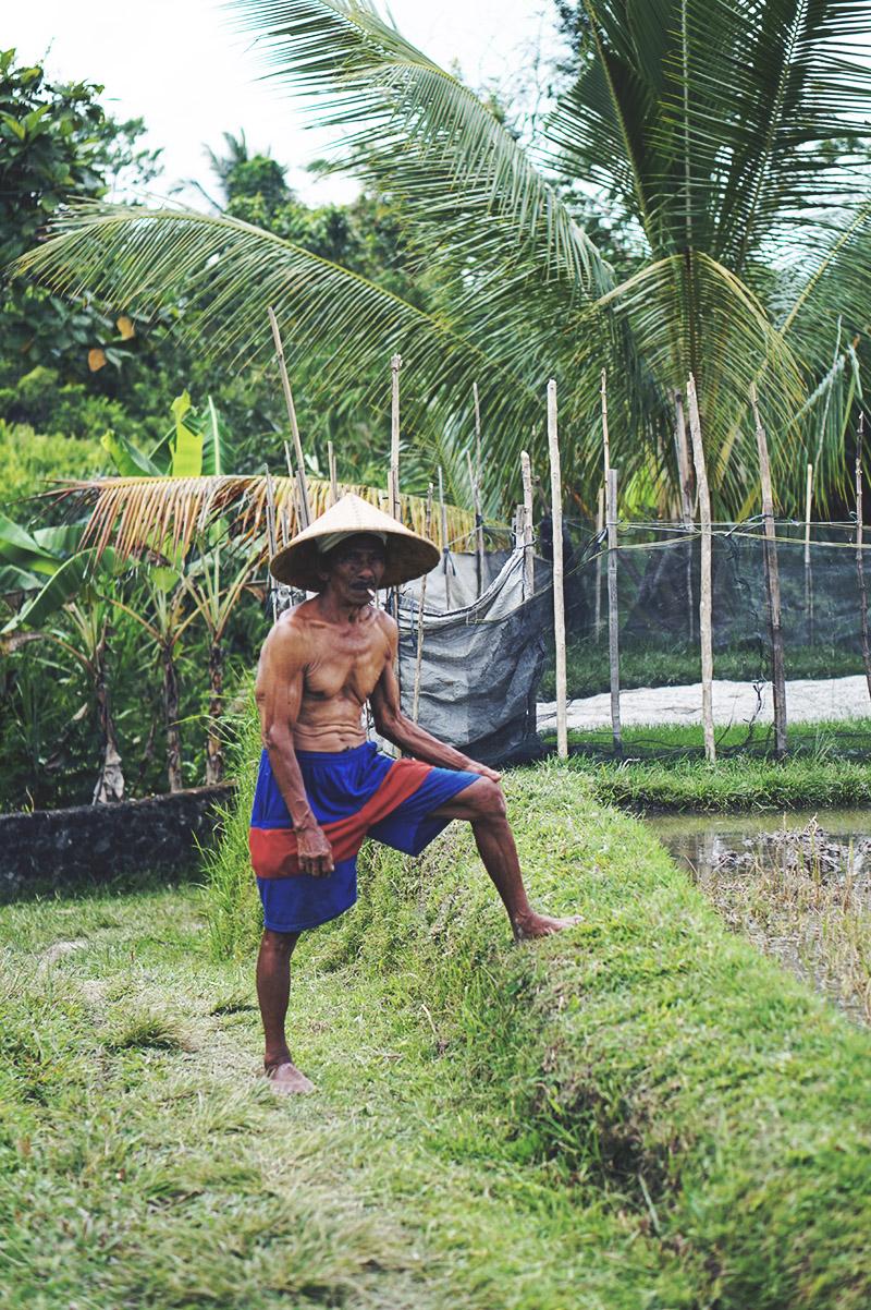 REJSE GUIDE <strong>BALI</strong> - Ubud, Lembongan, Ceningan & Sanur 25