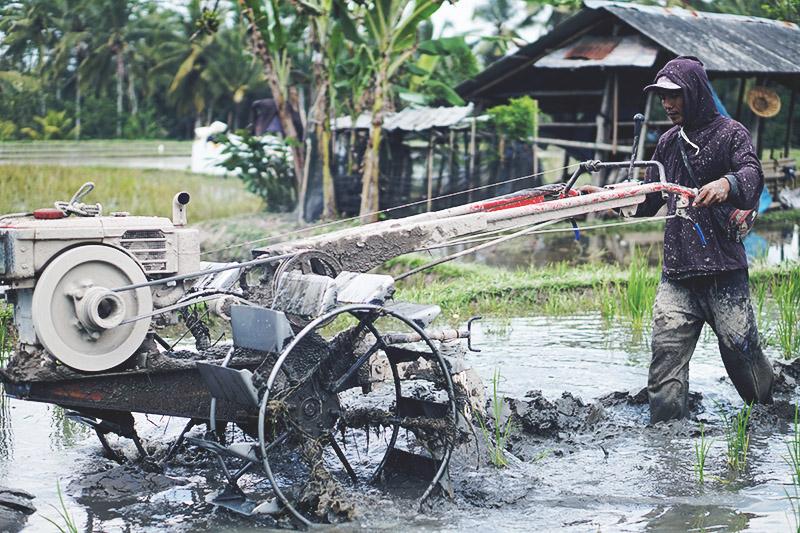 REJSE GUIDE <strong>BALI</strong> - Ubud, Lembongan, Ceningan & Sanur 21