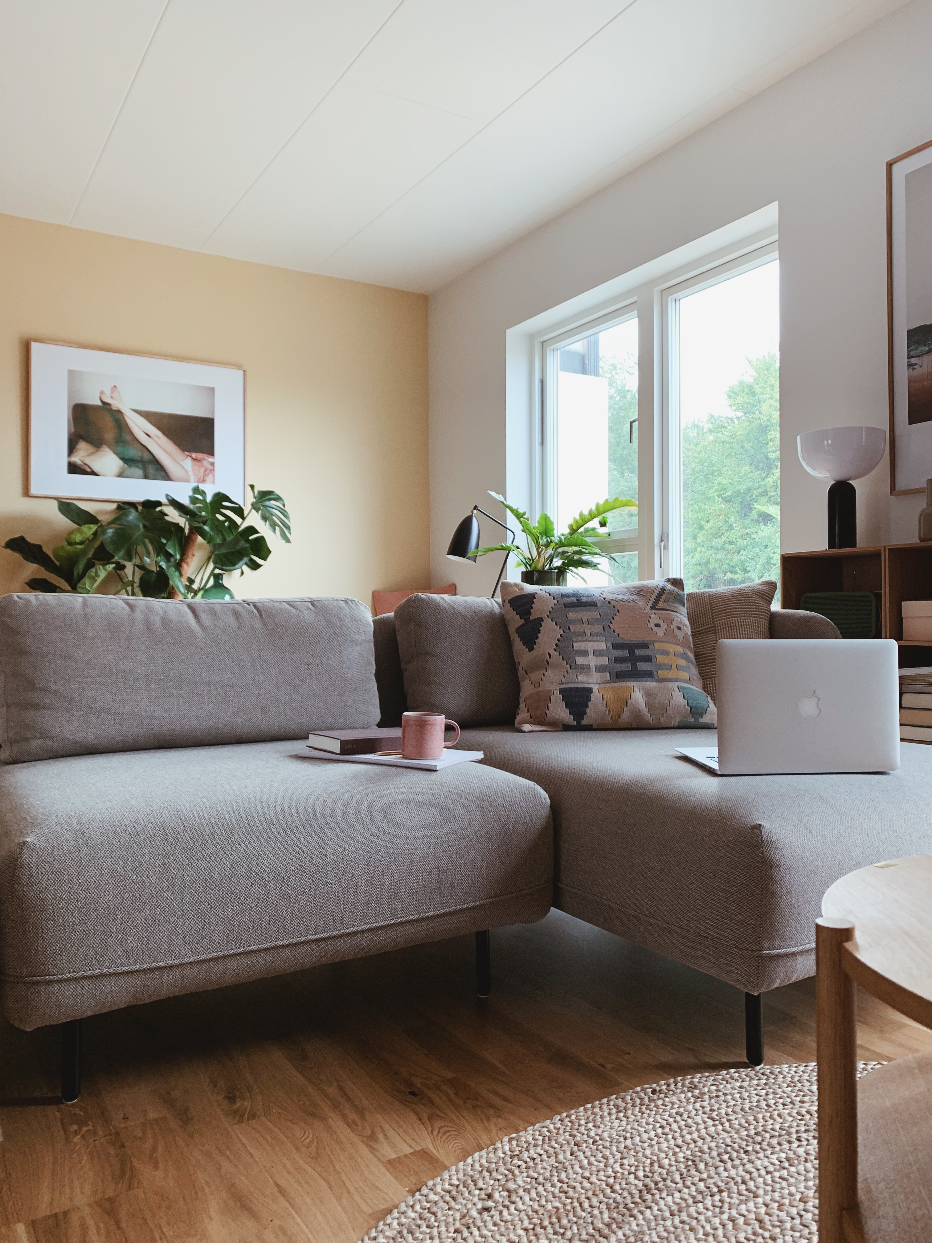 Chaiselong sofa