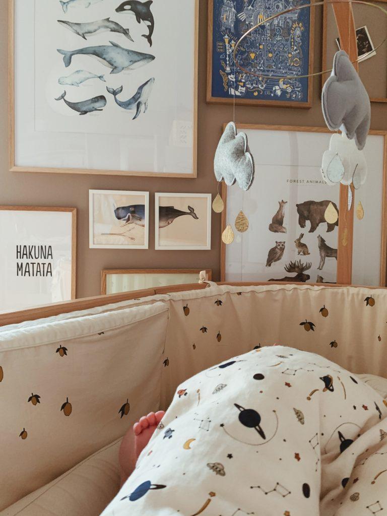 Søvnrutiner & <strong> søvnhjul </strong>: Baby 5 måneder 5